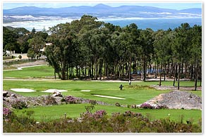 hermanus_golf