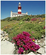 lighthouse_agulhas