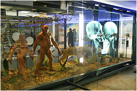 Sterkfontein Orientation Centre